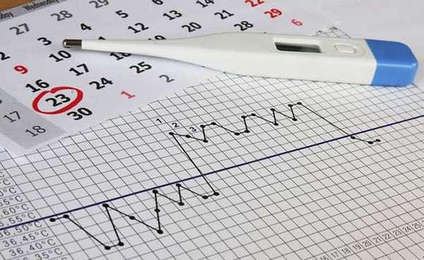 График базальной температуры при беременности еще до задержки позволяет определить, наступила она или нет.
