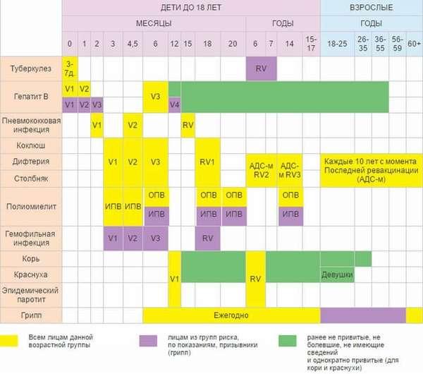 Вот полный график прививок для детей в России.