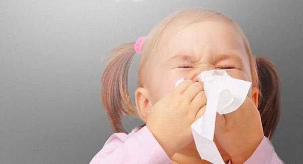 Что делать если возникла аллергия на шерсть собаки у ребенка