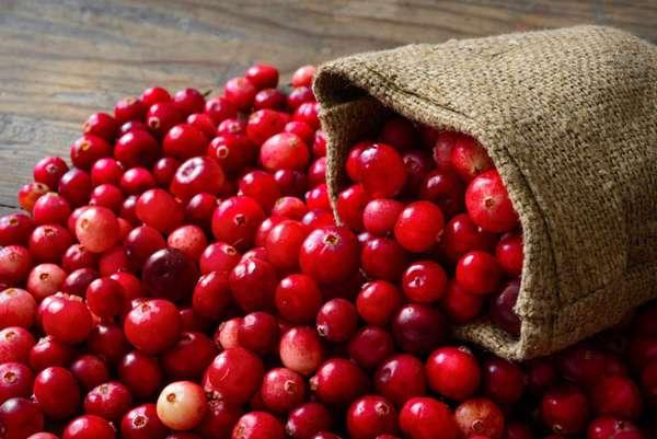 Болотная ягода клюква в ней фенолкарбоновых кислот, флавоноидов, антоцианов, витаминов