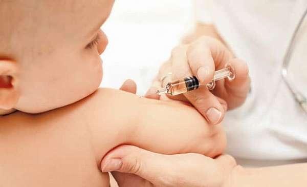 Кто производитель вакцины полимекс