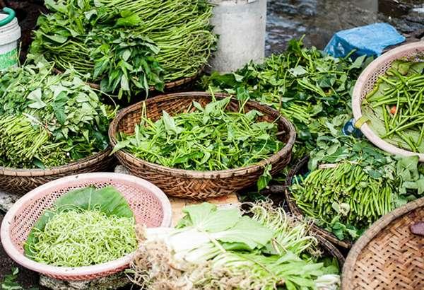 разные травы для голодания по Оганян