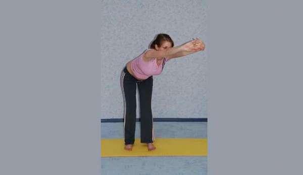 гимнастика для беременных 2 триместр