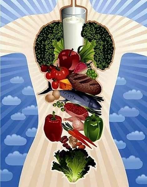 Полезные для организма продукты питания