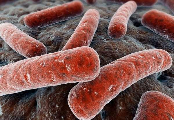 Аллергическая реакция возможна при включении клеточной защиты