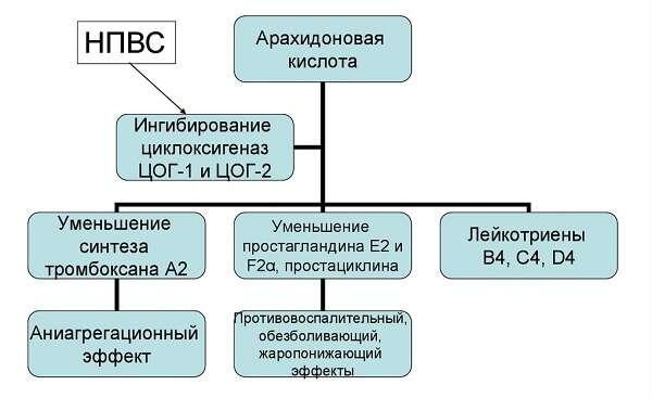 Лечение бронхита у взрослых противовоспалительными средствами