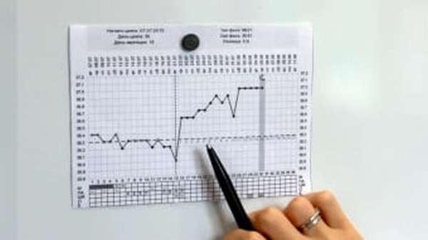 Девушка составляет график базальной температуры