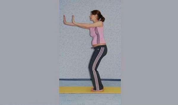 гимнастика для беременных 2 триместр для плечей