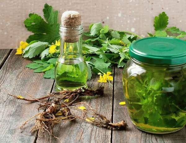 Настой чистотела для приема внутрь как использовать тампоны при эндометриозе