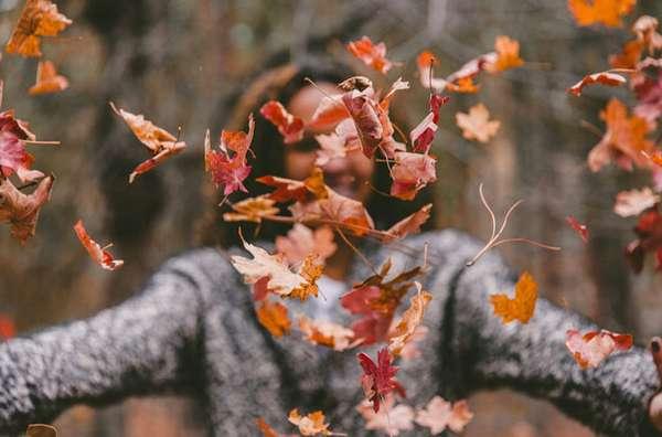 Осенний сезон важный период для укрепления иммунной системы