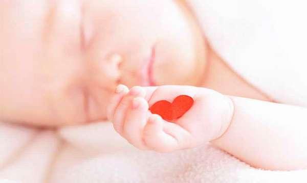 узи сердца новорожденному ребенку