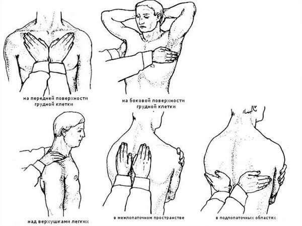 Физикальные методы диагностики бронхита: аускультация, пальпация, перкуссия