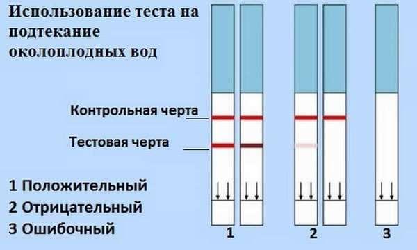 тест полоски для того чтобы понять что подтекают околоплодные воды