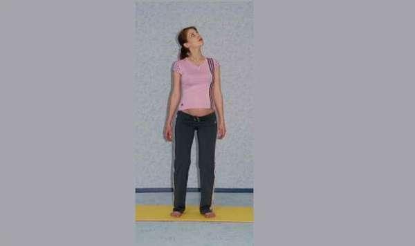 гимнастика для беременных 2 триместр шея